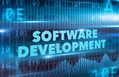 Influence Custom Software Development to Grow